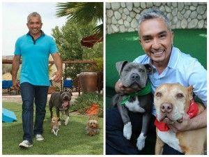 El célebre entrenador de perros César Millán recomienda utilizar césped artificial para las mascotas