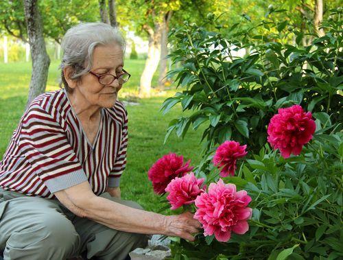 Personas mayores y el césped artificial